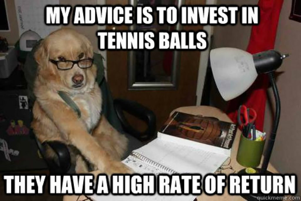 dog tennis ball investing meme