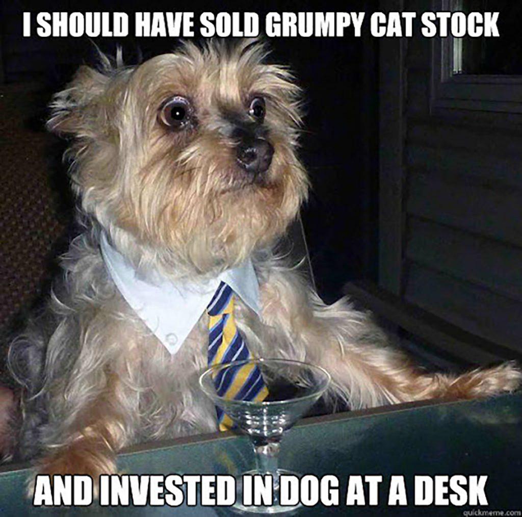 meme economy investing